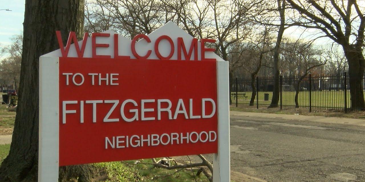 A closer look at the Fitzgerald community